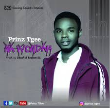 LYRICS: Na Wondah - Prinz TGee Music Lyrics